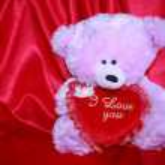 Valentines Day Teddy Bear Card - Stock Photo — Stock Photo