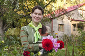 Young woman cuts dahlias in the fall garden. — Stock Photo