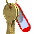 Two golden keys — Stock Photo