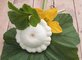 The fruit bush pattypan lying on a green leaf on a wooden table — Stock Photo