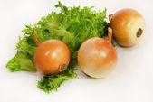 Fresh green salad and onion — Stock Photo