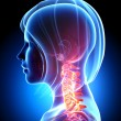 Female neck pain in blue — Stock Photo