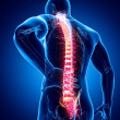 Stock Photo: Male spine pain