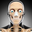 Human skeleton of head — Stock Photo