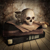 Front view of ancient skull with book — Stock Photo