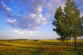 Landscape near Moscow — Stock Photo