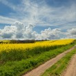 Yellow and clouds — Stock Photo