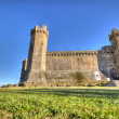 Montalcino Castle 2 — Stock Photo