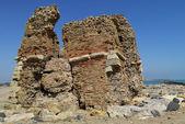 Torre flavia — Stok fotoğraf