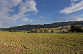 Tuscan country — Stock Photo