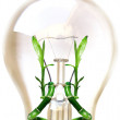 Eco lampa — Stockfoto #14325341
