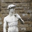 Stock Photo: David Michelangelo