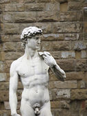 David Michelangelo — Stock Photo