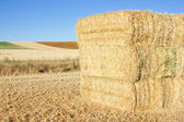 Haybale — Stock Photo