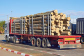 Truck with logs — Stock Photo