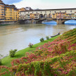 Flornce, Arno River - Stock Photo
