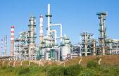 Complejo de refinería — Foto de Stock