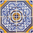 Traditional Portuguese azulejos — Stock Photo #21011463