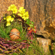 Egg on the Rock - Stock Photo