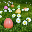 Royalty-Free Stock Photo: Colorful Easter eggs in a field