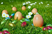 Candy Easter eggs — Stock Photo