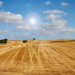 Stock Photo: Wheat haystack landscape