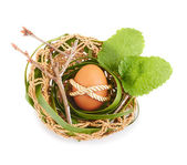 Easter Egg in a bird nest — Stock Photo