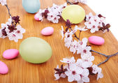 Colorful easter eggs — 图库照片