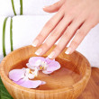 Hands Spa — Stock Photo