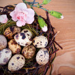 Royalty-Free Stock Photo: Quail\'s Eggs and Flowers in a Easter Nest