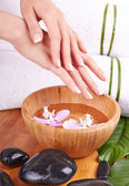 Hands Spa and Manicure — Stock Photo