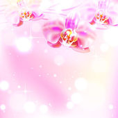 Background with orchid — Stock Vector
