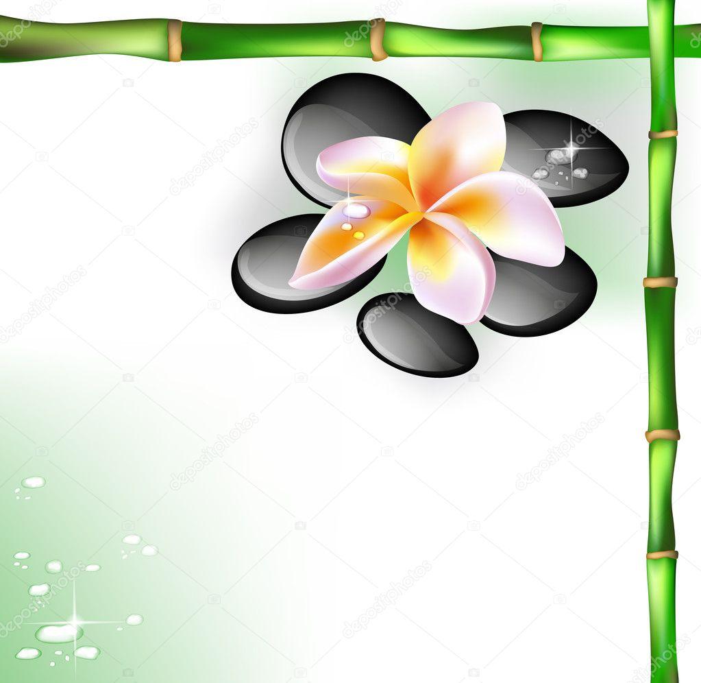 Spa concept zen pierres et des fleurs de frangipanier \u2013 Illustration