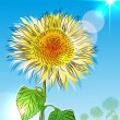 Sunflower over blue sky — Stock Vector #30066155