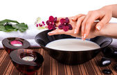 Spa for hands with orchids and bowl of milk — Stock Photo