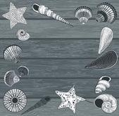 木制背景上的贝壳 — 图库矢量图片