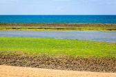 Atlantic ocean during the low tide — Stock Photo