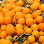 Juicy oranges — Stock Photo #25746021