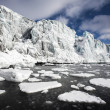 Arctic glacier landscape — Stock Photo #13824533