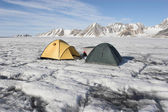 Tent on the glacier — 图库照片