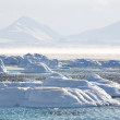 Arctic landscape — Stock Photo