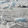 Floating and melting ice — Stock Photo #14688861