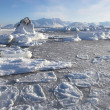 Arctic landscape — Stock Photo #14688957
