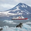 Red ship in the Arctic fjord — Foto Stock