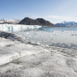 Arctic glaciers, mountains and fjord — Stock Photo