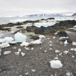 Stock Photo: Arctic fjord after winter