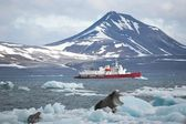 Red ship in the Arctic fjord — Stock Photo