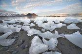 Ice on the Arctic beach - Spitsbergen, Svalbard — Stock Photo