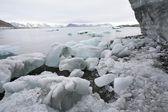 Arctische fjord - bergen en ijs — Stockfoto
