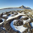 Patterned ground in the Arctic tundra - natural phenomenon of rocks selection - Spitsbergen, Svalbard — Stock Photo #24406455